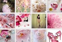 Pink.  / by Michelle Moody-Rubino