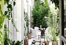 Inspirace-bydlení, zahrada