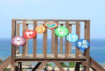 その他 / ちゅら沖縄に掲載しているその他の画像です。