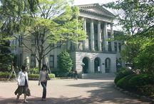 University / 大学
