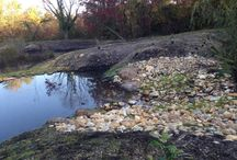 Stormwater Projects / Everyone lives within a few miles of one of the countless streams, creeks and rivers that can be a direct pipeline from your home to the Bay.  In rain events, pollutants such as fertilizers, pet waste, motor oil, soapy water from car washing and septic tank overflow get washed into a nearby tributaries and eventually the Bay.  Stormwater runoff the fastest-growing source of water pollution in Maryland