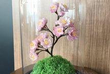 Fanus çiçek