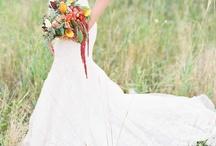 Wedding / by Stefanie McGahen