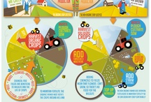 Infographics / by Jessica Draws Media Ltd
