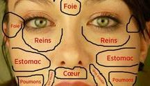 carte du visage