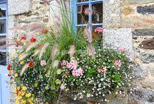 idees jardinieres