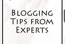 Blogging Tips from Experts / You want to Become a Successful Blogger? I know you need good quality information, so I've created this board to give them to you. A place where you can find the best advice of successful bloggers. All blogging experts have shared their advice on this fantastic board. Don't miss it. Repin the best Pin you find below, and you'll be awarded.