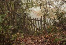 Obrázky-podzim