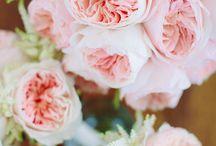 idema / bruiloft 12 september
