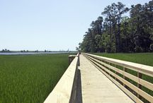 Parks & Rec / Notes about the parks, playgrounds and recreational activities in Leland, NC and Wilmington, NC.