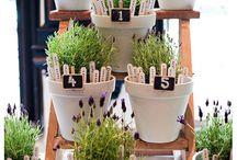 Mariage plantes