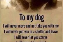 Dog (MY DOG)