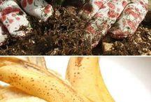 Kompost - Organic fertilizers / How to make & use...