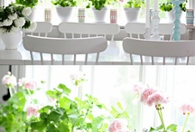 Love Garden / Love Garden