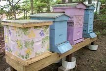 Pszczoły.......