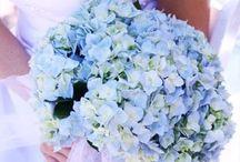 Blue wedding ideas! / Blue Wedding Inspiration! / by Karen Buckle Photography - Wedding & Portrait Photographer Noosa Beach & Destinations Worldwide