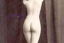 female body shape