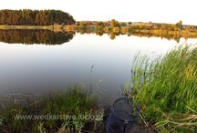 "Fishing / Fishing in Poland: ""Niedźwiadek"" lake"