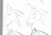 How To Draw A Horses Head