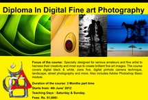 Photography Workshops and Contests