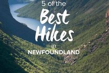 Newfoundland places to see