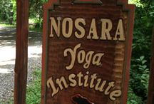 NOSARA YOGA INSTITUTE / by CJC PAM MRA