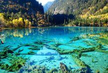 teal/turquoise/aqua/seafoam / color / by Katy Fox