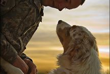Fantastic devoted animals,,, / Mans best friends,,,