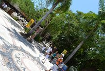 DISCOVER THE WONDERS OF MAYAN CULTURE / DISCOVER HOW  LIVING IN MEXICO CAN IMPROVE YOUR FAMILY LIFE