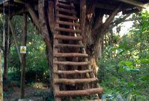 Casas en árbol