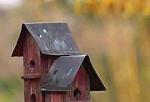 Vogelhuisjes enzo