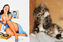 CAT pin up