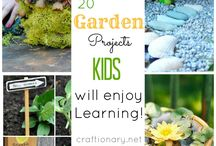 Gardening & Yard Ideas / by Allen Eddy Sr