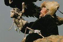 kazakh tribe