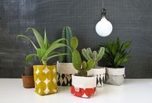 Trending / Whatever is new and current in South African design