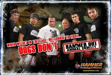 Hammer Out Animal Cruelty / by Hammer Training & Fitness