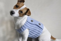 Adorable Dog Clothes / by Danice Gentle