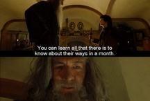 ALL HOBBIT RELATED