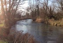 Rivers, Lakes and Streams