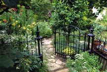 גדר ושער ברזל
