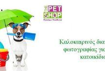 Διαγωνισμοί / Διαγωνισμοί The Pet Shop
