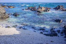 Lodge-Ekos de Mar