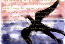 La stagione dei sogni / Romanzo d'esordio di Ernesto Rossi  NOTA: quasi tutte le immagini di questa bacheca sono originali, riprese personalmente.