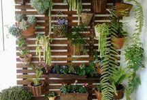 DIY Gardens