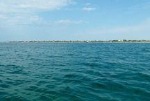 Crimea / Sea,freedom,hapiness