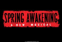 Musicals I ruined by singing along... / by Teri Williams