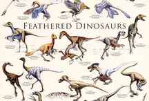 Dinosaurs/Prehistoric Creatures