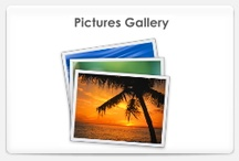 Pictures Gallery