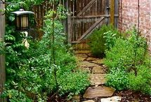 Gardening Fun!