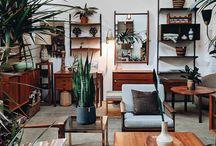 living room decor & plants